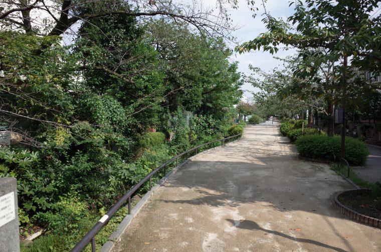 脇に小川が流れる『烏山川緑道』